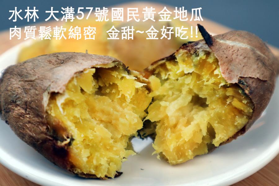 大溝57號國民黃金地瓜