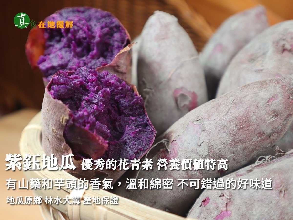 ▲▲▲水林大溝地區,所種植的台農73號『紫芋地瓜』,口感非常綿密富有花青素,也是不可錯過的養生的『原形食物』。