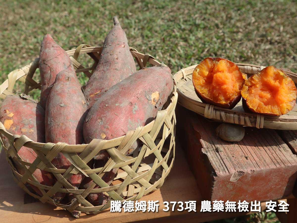 台農67號 地瓜 最出名的特色就是 口感達松,不削皮連皮一起吃,可以吃到更完整的營養。